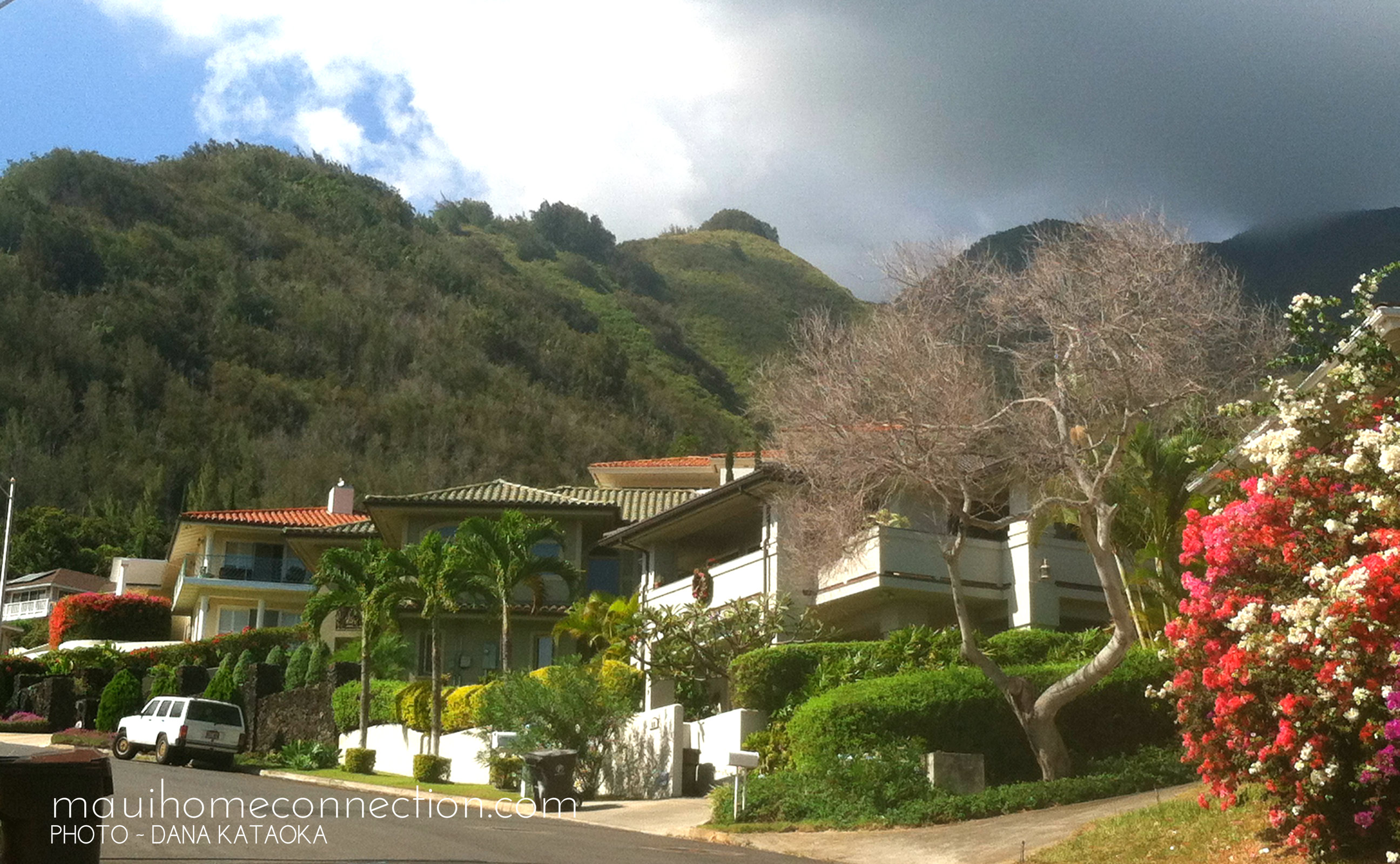 Central Maui Homes for sale | MauiHomeConnection Wailuku